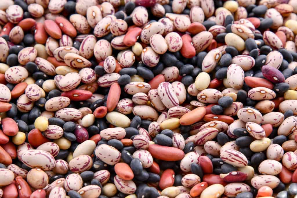 beans and weight loss