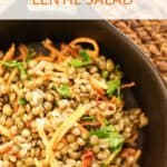Warm French Green Lentil Salad