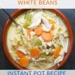 Instant Pot Creamy Chicken Noodle Soup With White Beans