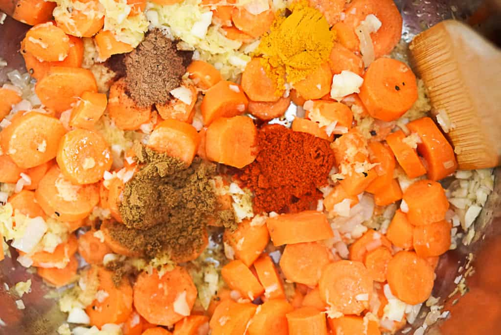 Seasoning Instant Pot Carrot Soup